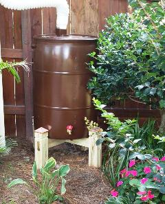 Rain Barrel - Free Shipping